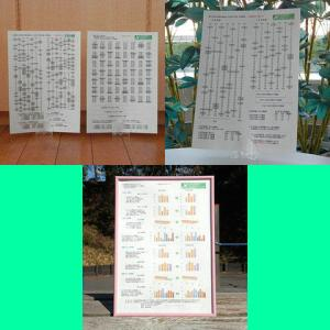 伝送交換の「出るハン&出ずモン」、「マヨコレ」を発売開始