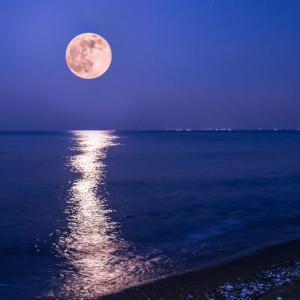 明日は、山羊座の満月です