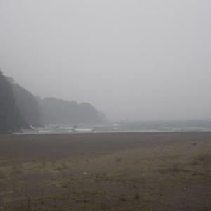 被災地復興を見る~田野畑、北山崎、黒崎海岸
