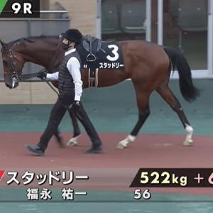 京成杯(GⅢ)他 今日の競馬