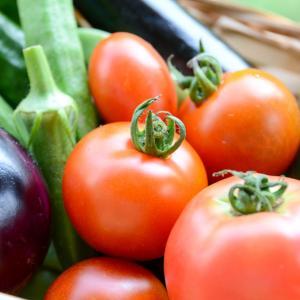 減塩にも効果的!旬の夏野菜は体にうれしい栄養たっぷり!