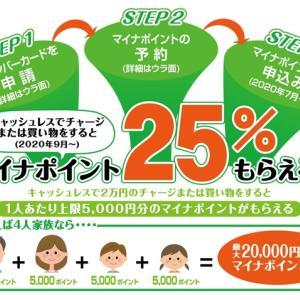 【5000円】マイナポイントの準備したよー!