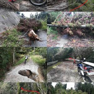 台風 15,19 号後 千葉県内 林道探査 チェーンソー動かすも 撤退