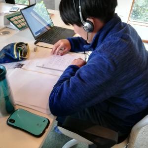 帰国子女入試で上智大学に見事合格! 高校留学の勉強のサポートもしています