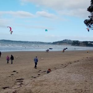 風の日だからこそできるスポーツ! カイトサーフィン