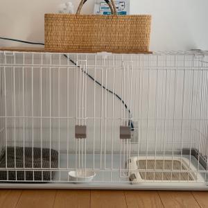 初めても室内犬を飼うために、用意したケージ。3年経った今。