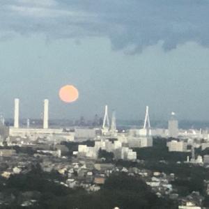 大きな太陽~?月??
