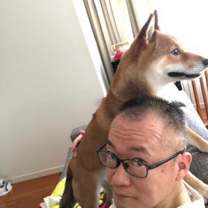 柴犬まこ(我が家に来て1705日)2021.7.30(金)