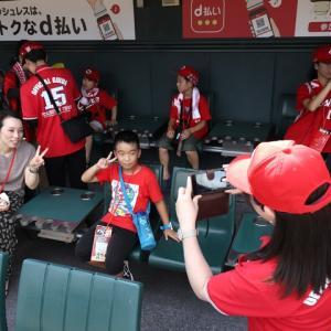 広島カープがアルバイト募集「マツダスタジアムのツアーガイド」と「キャンプの球場整備、備品移動等」