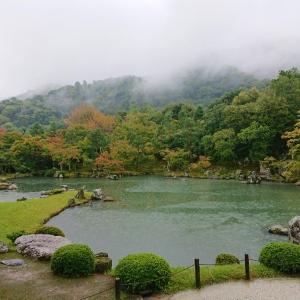 雨の京都へ3