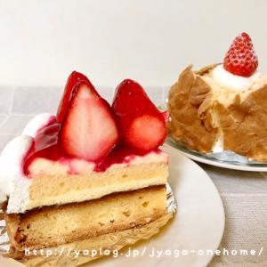 OSHIKAWAのケーキ♪