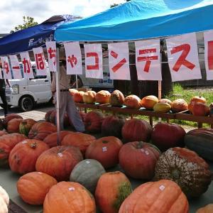 少し寄り道のつもりが、、、モンスターかぼちゃの重量は?