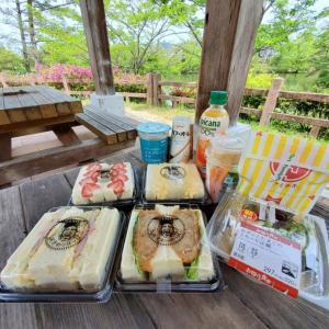 ゴールデンウィーク4日目~近所でピクニック~