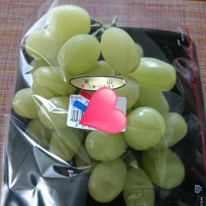 毎週末、せっせと食べる葡萄