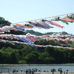 GW恒例の「泳げ鯉のぼり相模川」、昨年の開催をもって「終了」と発表が・・・
