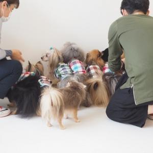 洋服チェンジ8回目