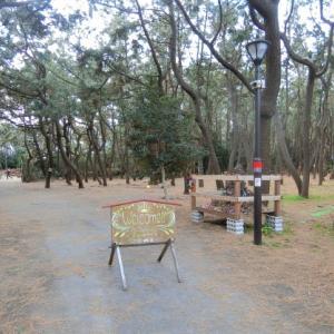 2020年 1月1日 柳島キャンプ場