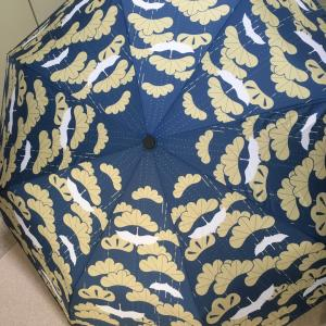 愛でたい傘  =       目でたい柄