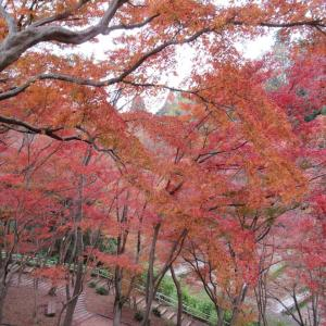 「卯辰山三社と周辺の歴史」