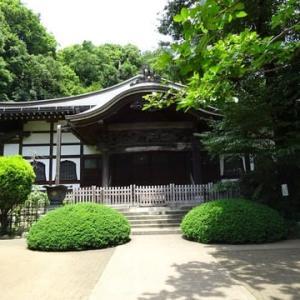 6月9日のまち 東京・国分寺で その7