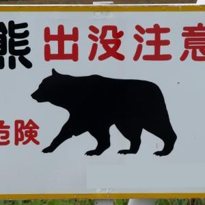 【クマ目撃情報】札幌市東区東雁来・豊平川サイクリングロードで熊1頭目撃(2020年6月5日)
