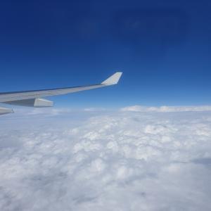 大阪旅行から帰国~