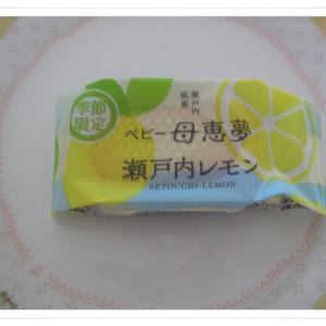 愛媛県のお土産