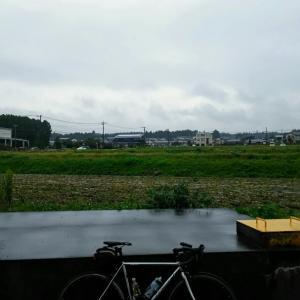 清水区グルメライド(地魚丼、35cmのビックパフェ、鯛焼き、カロリーオーバー)