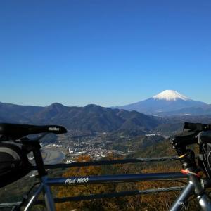 松田山(チェックメイトCC)~弘法山公園~震生湖(秦野、富士山絶景、権現山、なたね、紅葉ライド)