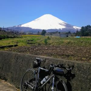 地元のお散歩ポタ(富士山、黄色い絨毯、長尾峠、Xperia8)