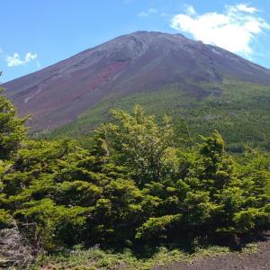 奥庭自然公園(富士スバルライン・令和2年二回目、夏休み、富士山五合目、花の都公園、富士山絶景)