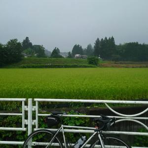 大野山~丹沢湖(つらい時が登り坂、丼万次郎、久しぶりの神奈川県ライド)