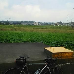 夏の西伊豆スカイライン(達磨山、絶景スポット、バイシクルピットスタンプラリー)