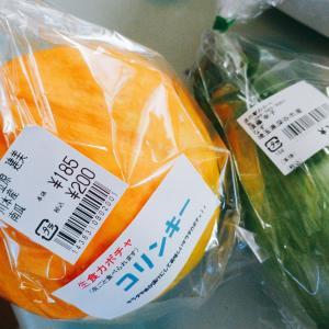 道の駅で買った野菜といろいろ
