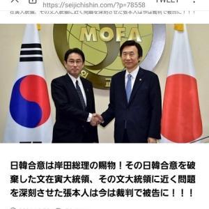 外相時代、岸田総理は