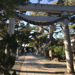葉山に留まることにしました。
