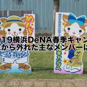 2019横浜DeNAベイスターズ春季キャンプ!1軍から外れた主なメンバー・選手は(2軍スタート)は!?