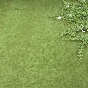 庭の俯瞰撮影