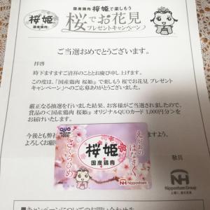 【当選2件♪♪】QUOカード&商品券
