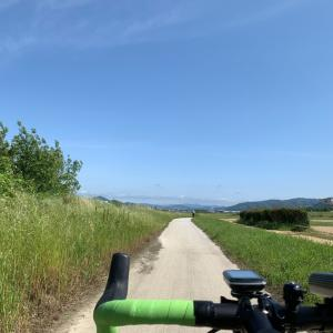 今日はサイクリングの日らしいですよ