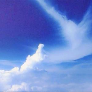苦悩に泣く民衆を救うことにこそ、仏法の精神がある -指導集(19)