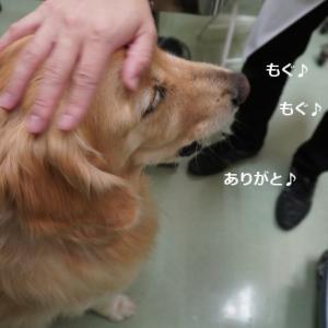 病院で検査