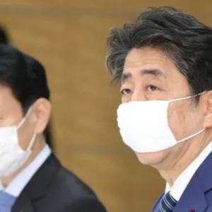 布マスク問題で騒いでるやつ大体養分。って話し