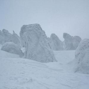 再度 八甲田で山スキー