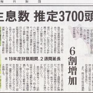 秋田県内の〝熊〟生息数