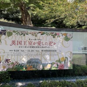 東京都園庭美術館へ