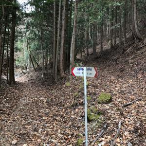 リベンジの本社ヶ丸&清八山へ