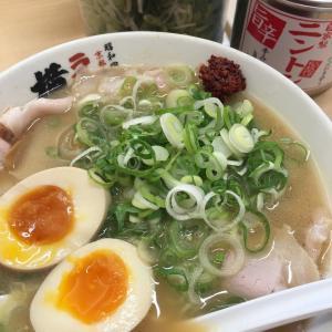 チャーシュー麺@横綱
