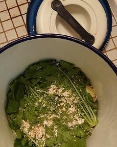大根の麹漬けと白菜の塩漬け