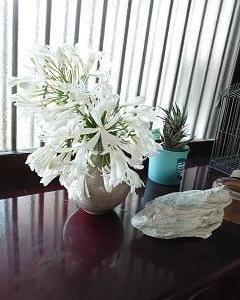 「七夕飾りと乞巧奠2021」の生け花